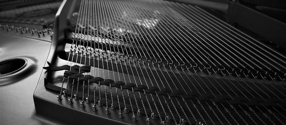 Pianoles Renkum op vleugel